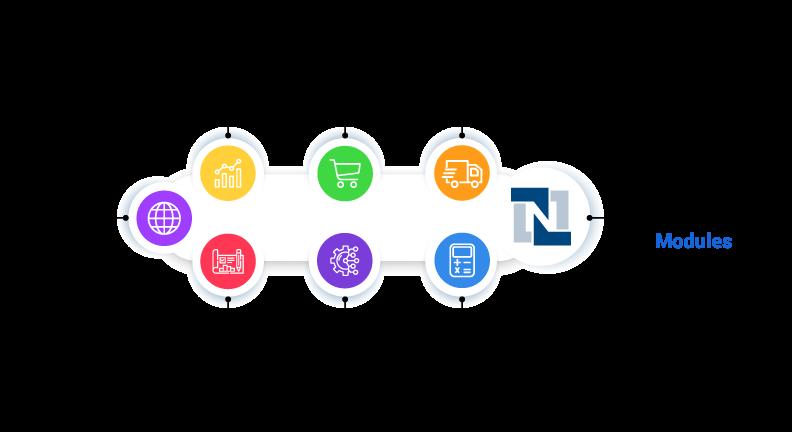 Advanced NetSuite Module Pricing